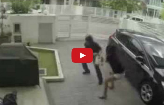 Robber Tries to Rob MMA Fighter Woman and Takes a Beating